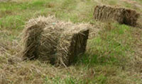 A few ways to stretch the haystack